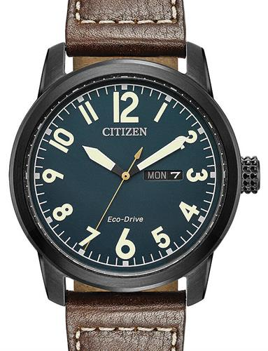 citizen eco drive titanium wr100 manual