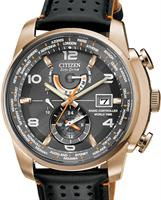 Citizen Watches AT9013-03H