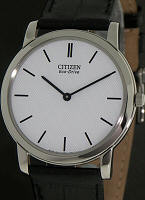 Citizen Watches AR1060-09A