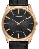Citizen Watches AR3073-06E